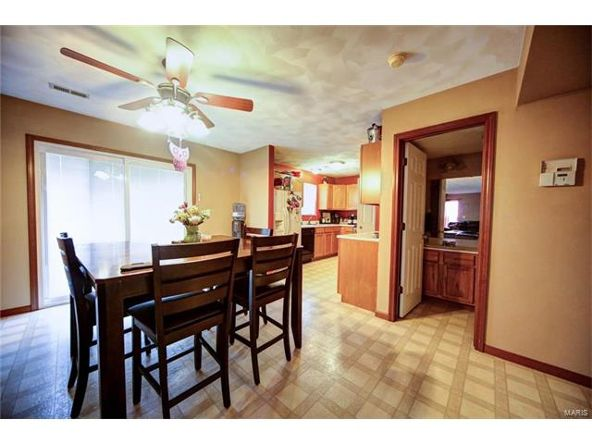 804 Country Meadow Ln., Belleville, IL 62221 Photo 8