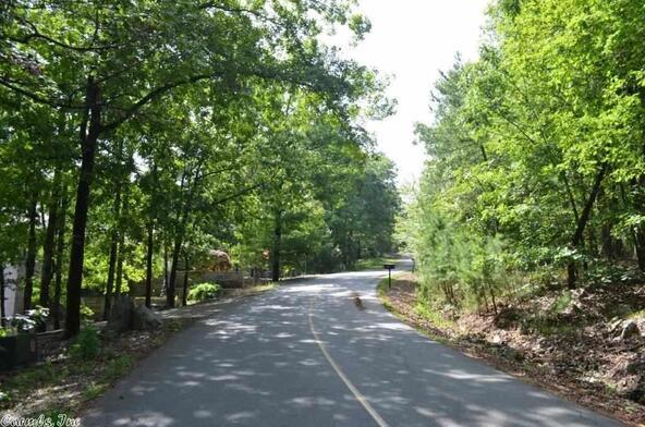 85 Mesero Way, Hot Springs Village, AR 71909 Photo 14