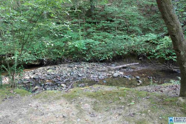 75 Creek Run, Sylacauga, AL 35151 Photo 25