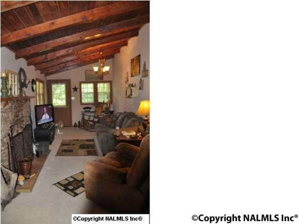 580 Howell Rd., Guntersville, AL 35976 Photo 11