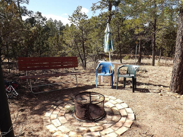 3655 Enchanted Forest Dr., Overgaard, AZ 85933 Photo 6