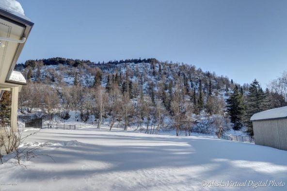 10608 Alethas Mountain Way, Anchorage, AK 99507 Photo 92
