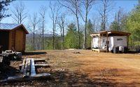 Home for sale: Lt 49 Charlotte Mountain, Ellijay, GA 30540