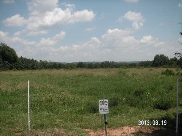 40 Acres M/L, Clarksville, AR 72830 Photo 3
