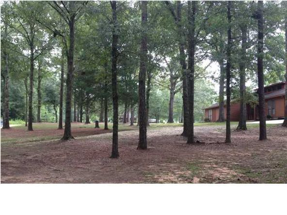 8231 South Maple Valley Rd., Semmes, AL 36575 Photo 19