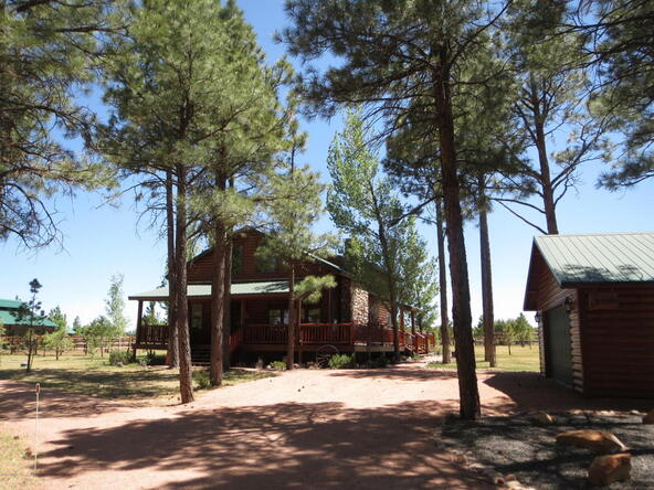 2295 Bison Ranch Trail, Overgaard, AZ 85933 Photo 6