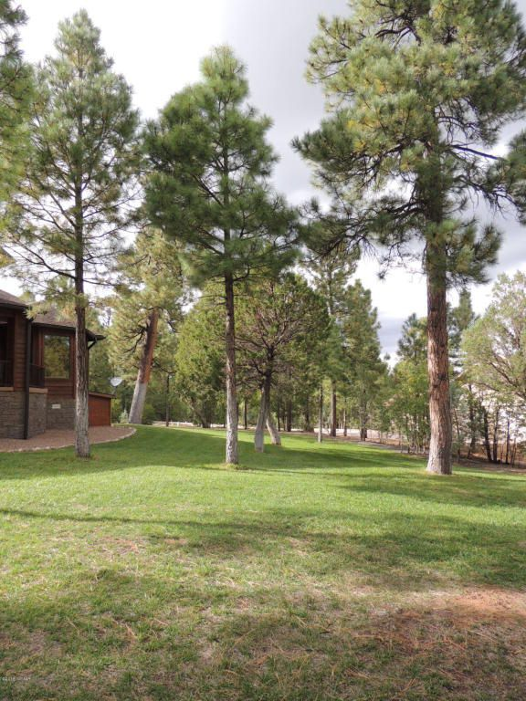1911 S. Sierra Park Trail, Show Low, AZ 85901 Photo 39