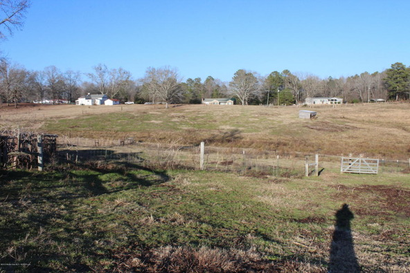 3601 Brookside Rd., Brilliant, AL 35548 Photo 6