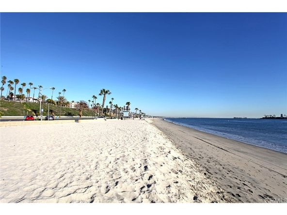350 Molino Avenue, Long Beach, CA 90814 Photo 62