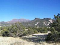 Home for sale: 000 County Rd. N2173, Nutrioso, AZ 85932