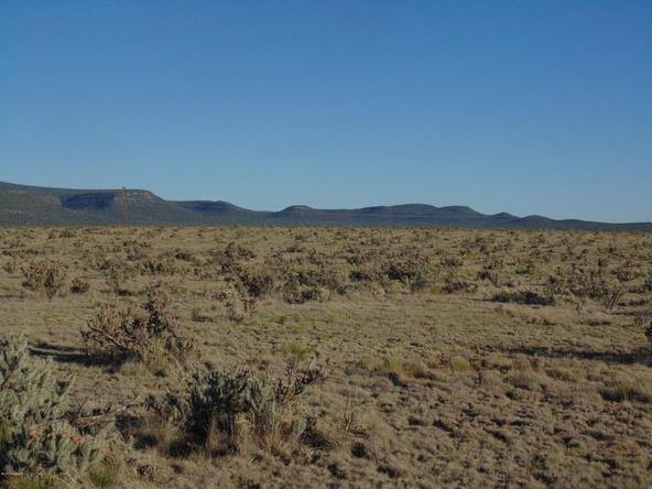 1430 Sierra Verde Ranch, Seligman, AZ 86337 Photo 4