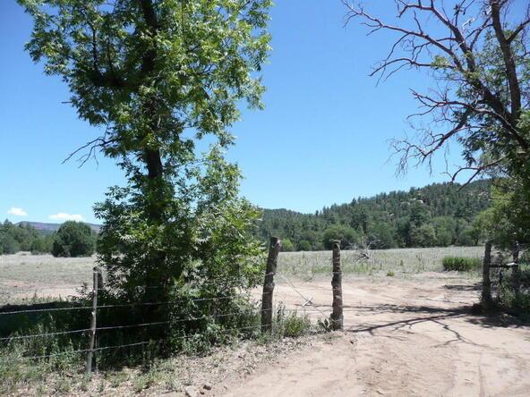 200 E. Cline Crossing, Young, AZ 85554 Photo 49