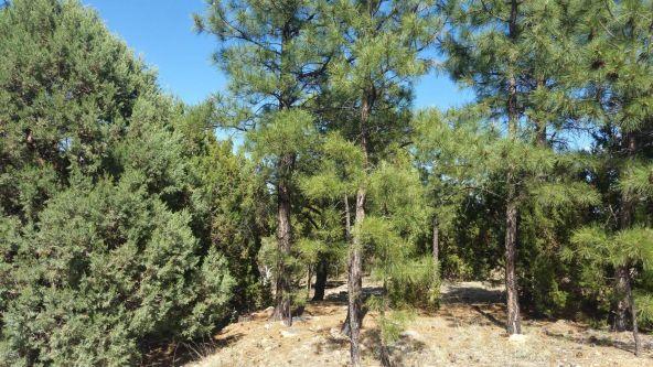 1496 Shade Tree Dr., Heber, AZ 85928 Photo 2
