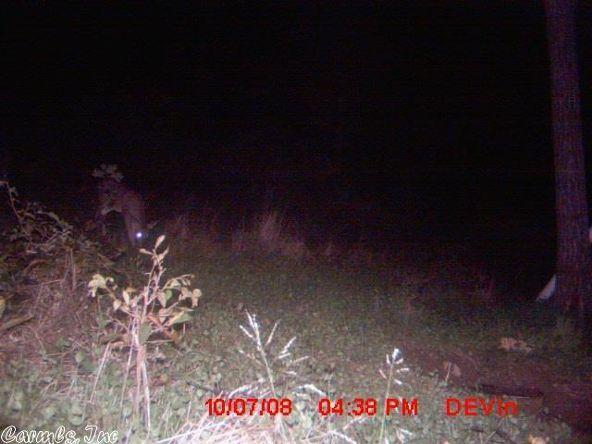 1127 Nature Dr., Saint Joe, AR 72675 Photo 21