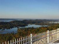 Home for sale: 261 Scenic Bluff Dr., Guntersville, AL 35976