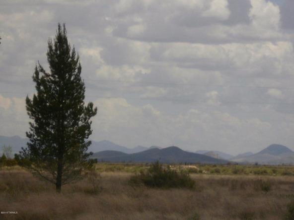 1588 N. Steele, Cochise, AZ 85606 Photo 47