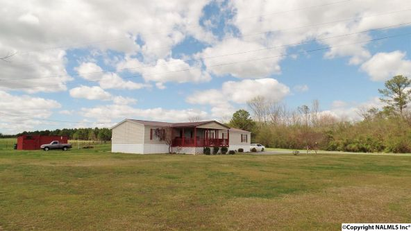547 County Rd. 550, Grove Oak, AL 35975 Photo 1