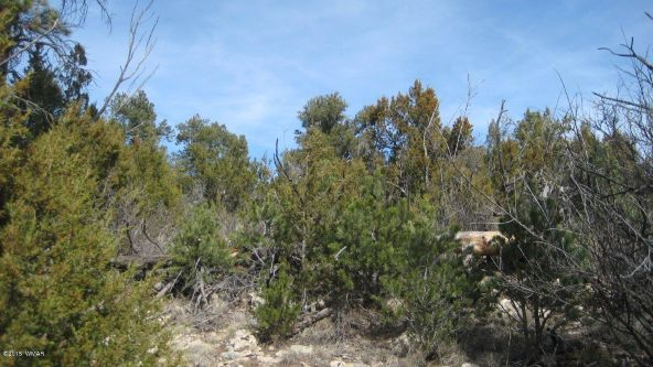1950 Bear Cave Cir., Overgaard, AZ 85933 Photo 12