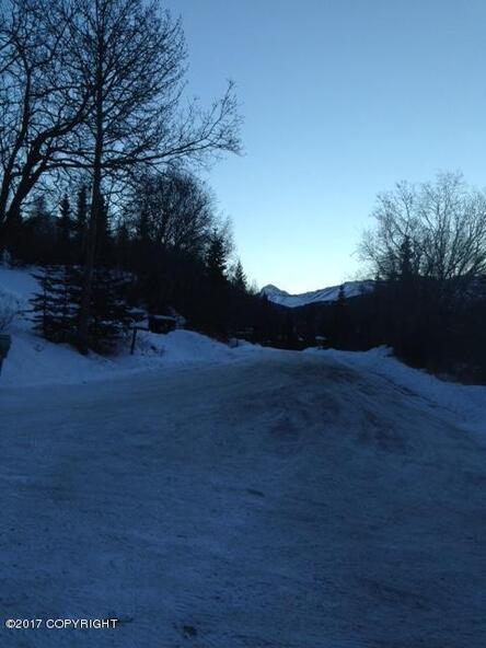 12801 Midori Dr., Anchorage, AK 99516 Photo 5