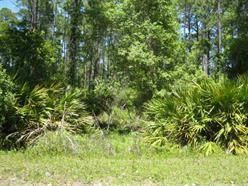 - Lakeview Dr., Alligator Point, FL 32346 Photo 1