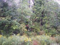 Home for sale: 6323 Redman Rd., Sweden, NY 14420