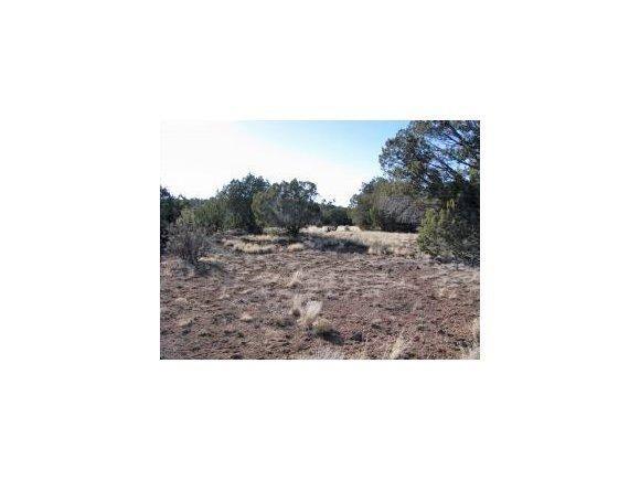 61 Juniperwood Ranch, Ash Fork, AZ 86320 Photo 1