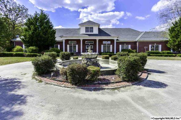 194 County Rd. 380, Decatur, AL 35603 Photo 4