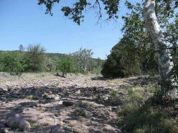240 S. Fred's Rd., Young, AZ 85554 Photo 52