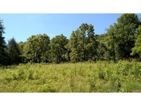 Home for sale: Pendleton Run Rd., Vevay, IN 47043