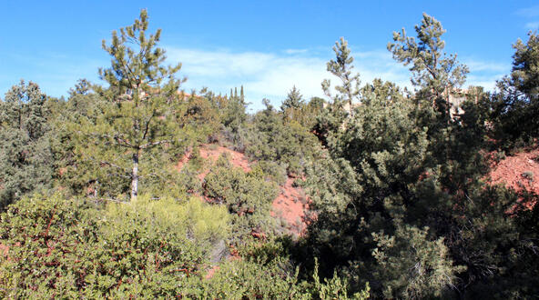115 Les Springs Dr., Sedona, AZ 86336 Photo 11