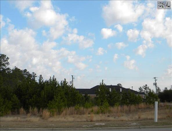 321/331 Rice Meadow Way, Columbia, SC 29229 Photo 3
