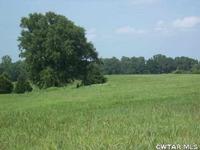 Home for sale: 0 Diamond Grove Rd., Pinson, TN 38366