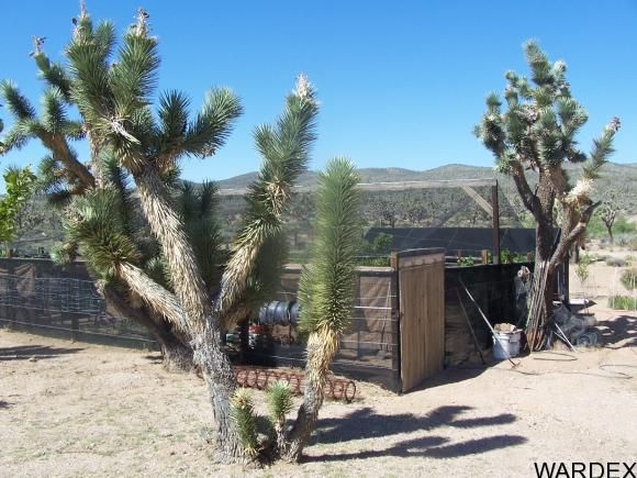 26026 N. Rainbow Rd., Meadview, AZ 86444 Photo 21