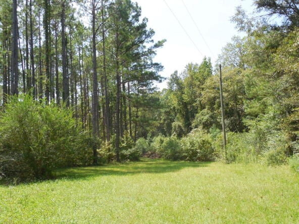 4 Acres Quail Dr., Dothan, AL 36301 Photo 8