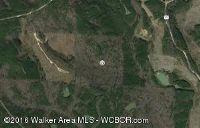 Home for sale: Crown Rd., Nauvoo, AL 35578