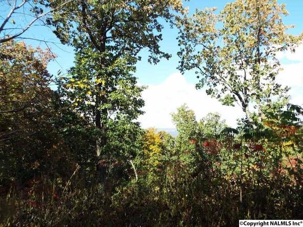 12 S. County Rd. 89, Mentone, AL 35984 Photo 7