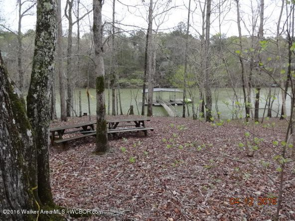 52 Wilderness Ln., Double Springs, AL 35553 Photo 25