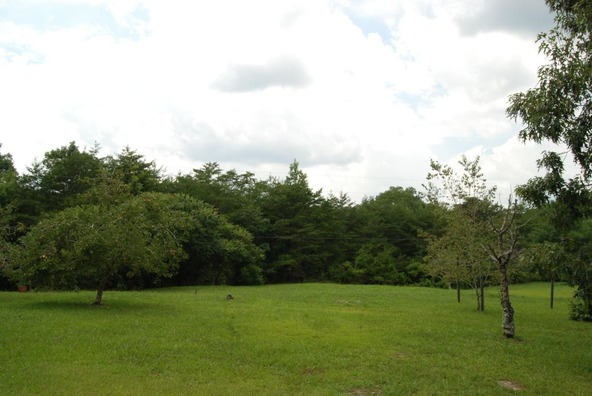70 County 944 Rd., Mentone, AL 35984 Photo 77