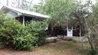 Home for sale: 338 Sisco Rd., Pomona Park, FL 32181