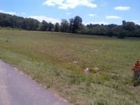 Home for sale: Lot 1 Volner Ln., Parsons, TN 38363