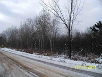 Home for sale: 4.25 Acres State Hwy. 107, Irma, WI 54442