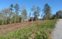 Home for sale: Lt 2 Brookwood Hills, Blairsville, GA 30512
