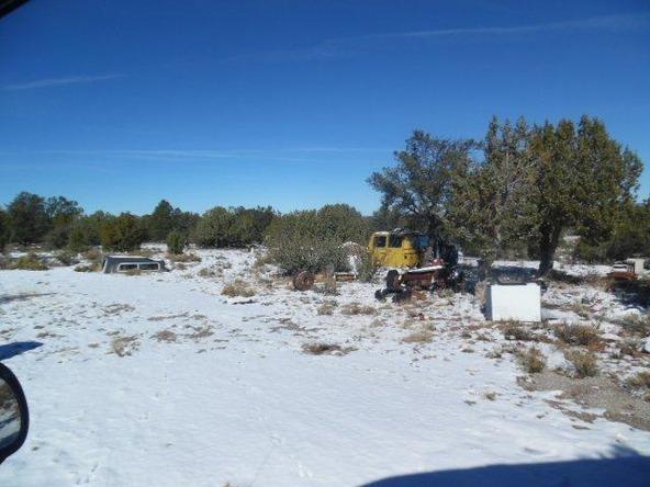 459 Hardrock Rd., Seligman, AZ 86337 Photo 36