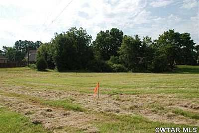 Lot 6 Meadow Brook Dr., Henderson, TN 38340 Photo 3