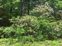 Home for sale: 1 Moccasin Creek Rd., Clarkesville, GA 30523