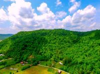 Home for sale: 1 Wagers Mountain Rd., Ravenna, KY 41339