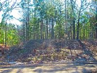 Home for sale: Lot #30 Bounty Rd., Eutawville, SC 29048