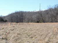 Home for sale: North Farm Rd. 159 West Tract, Springfield, MO 65803