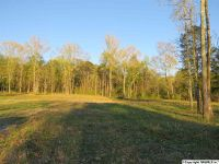 Home for sale: 3 Buck Island Dr., Guntersville, AL 35976