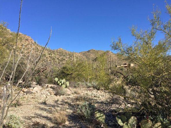 4156 W. Cayton Mountain, Marana, AZ 85658 Photo 3